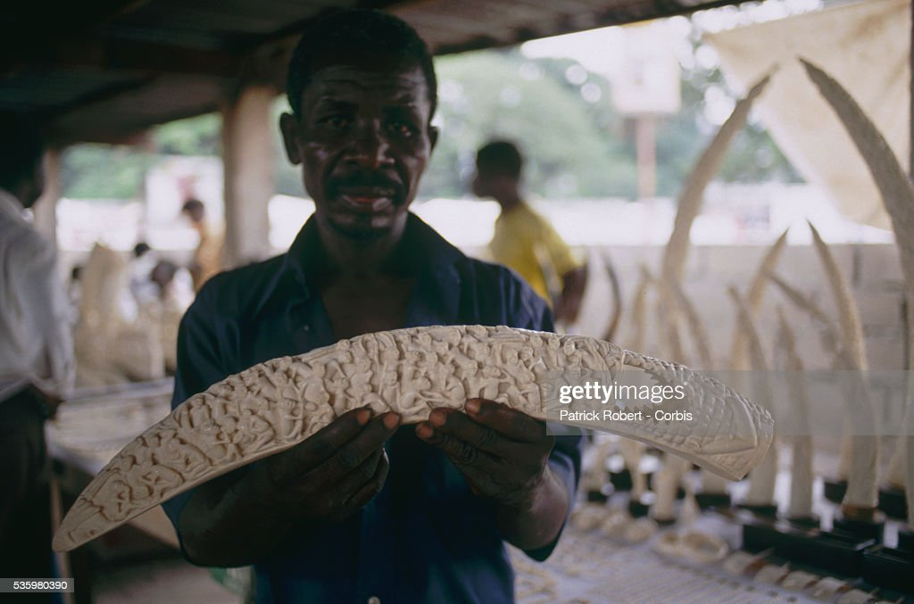 A man holds up an ivory carving made from an elephant tusk in Virunga National Park. The poaching of elephants and the traffic of ivory in Zaire (now the Democratic Republic of Congo) is an ongoing problem.