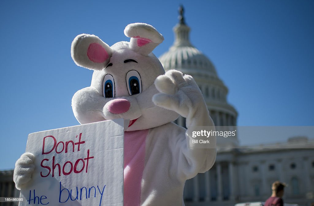 A man in a bunny suit walks around the East Plaza of the Capitol carrying a sign promoting the website purgeday.org on Monday, Oct. 21, 2013. PurgeDay.org sells a 'Positive Bunny as a symbol of hope', and raises awareness for military and teen suicide.