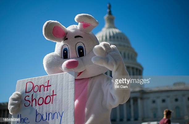 A man in a bunny suit walks around the East Plaza of the Capitol carrying a sign promoting the website purgedayorg on Monday Oct 21 2013 PurgeDayorg...