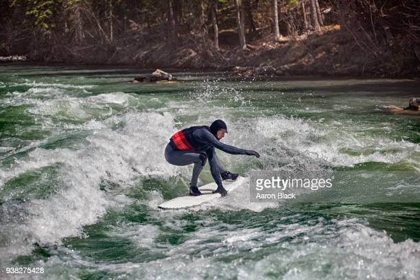 man in a grey wetsuit standing on surfboard surfing a green wave in the middle of a river. - kananaskis stock-fotos und bilder
