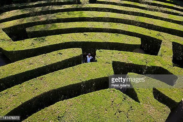 Man in a Maze, The Veneto, Italy