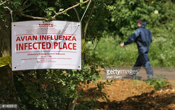 Man in a protective body suit walks past a sign warning of a outbreak of the H7 strain of bird flu, at Eastwood Farm, near Banbury on June 4, 2008 in...