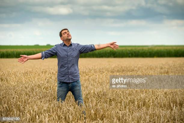man in a wheat field, arms outstretched - bras humain photos et images de collection