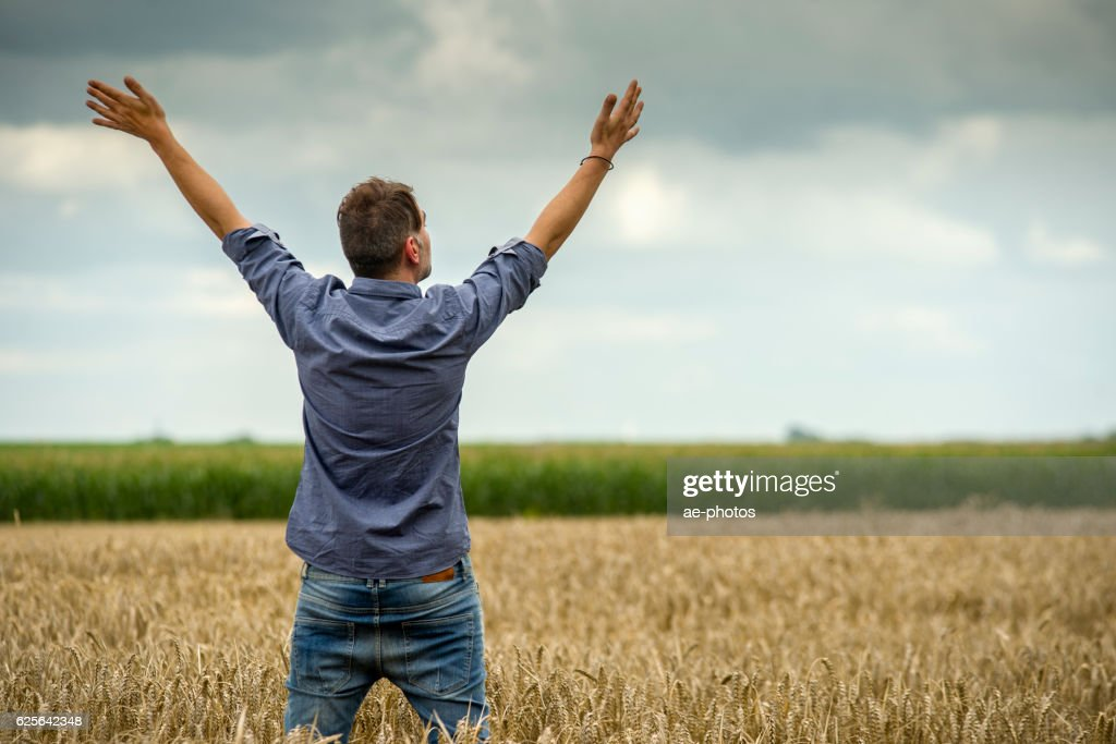 Man in a wheat field, arms outstretched : Stock-Foto
