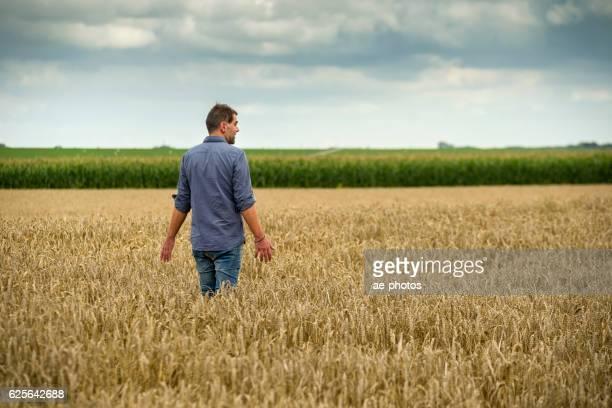 Mann in wheat field