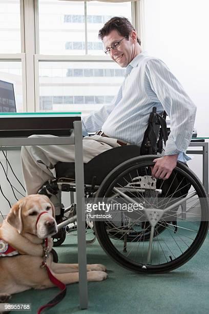 man in a wheelchair at desk in a home office with a service dog - servicehund stock-fotos und bilder