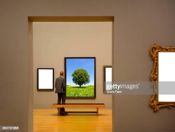 man in art gallery looking at paintings - arte, cultura e spettacolo foto e immagini stock
