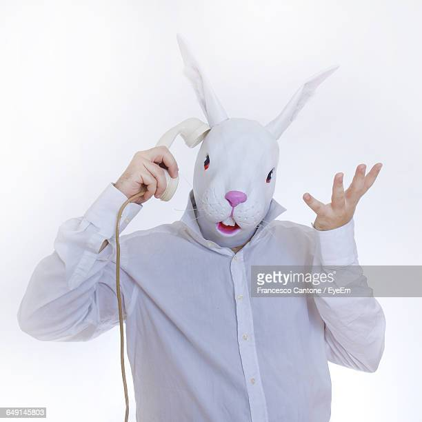 Man In Bunny Face Using Phone Against White Background