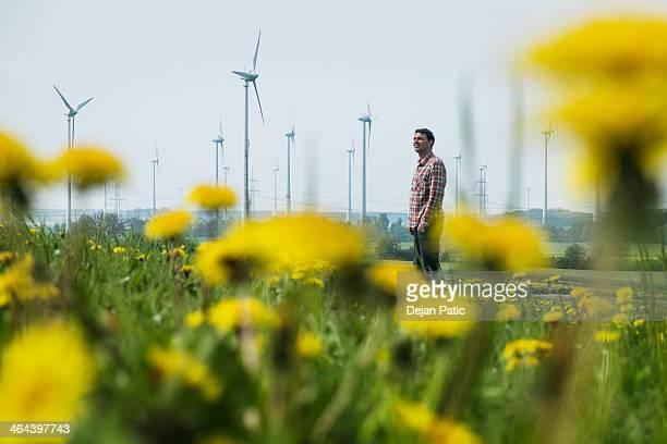 Man in dandelion meadow, windmill park