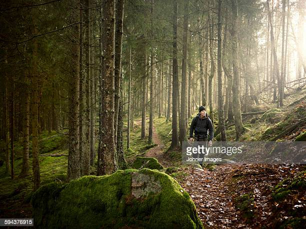 man in forest - wald stock-fotos und bilder