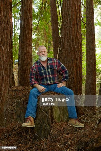 Man in Forest Sitting on Stump