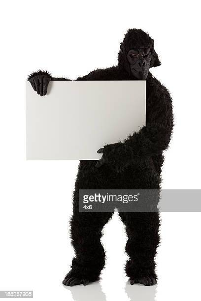man in gorilla costume holding a placard - monkey suit stock pictures, royalty-free photos & images