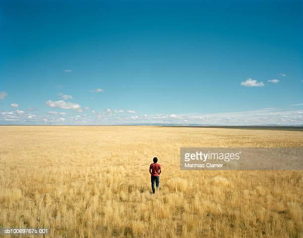 Man in grass plain, rear views