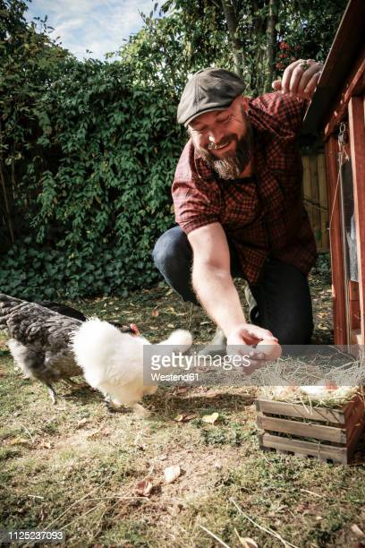man in his own garden, man holding egg of free range chickens - chicken coop stock pictures, royalty-free photos & images