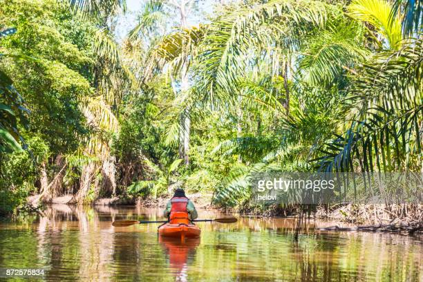 man in kayak on the river papaturro - central america stock pictures, royalty-free photos & images