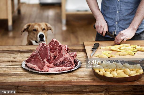 man in kitchen preparing potatoes and steaks with dog watching - dog eating stock photos and pictures