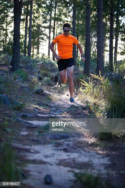 男性に沿った小道、オレンジ - オレンジ色のシャツ ストックフォトと画像