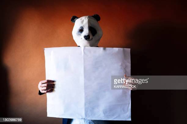 man in panda mask holding a white sign. - bear suit stock pictures, royalty-free photos & images