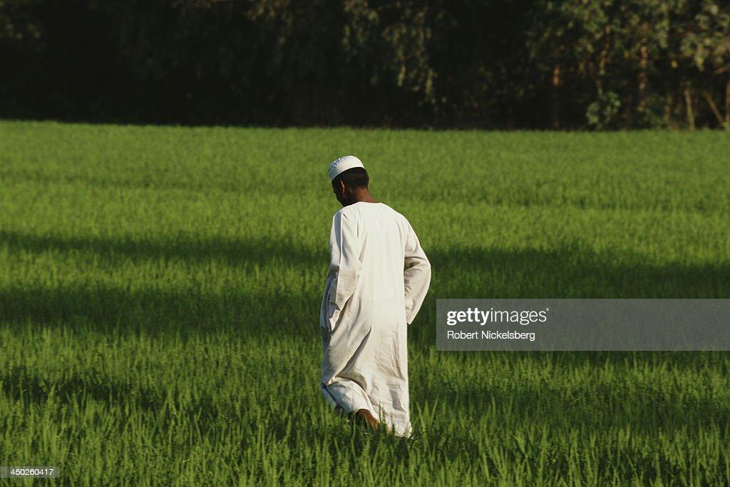 Mymensingh, Bangladesh : News Photo