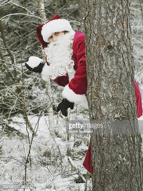 man in santa suit holding snowball behind tree - naughty santa stock photos and pictures
