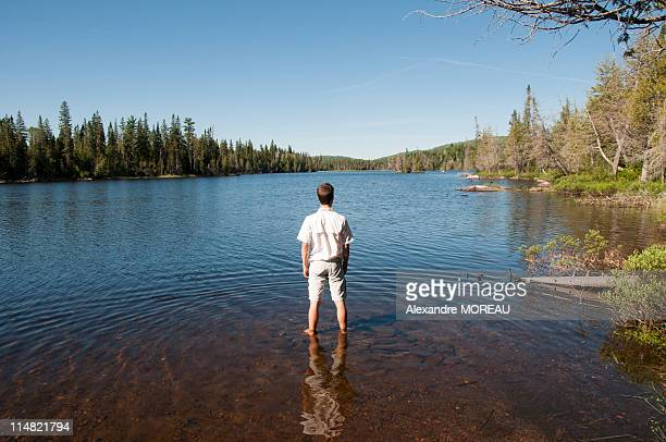man in shorts standing in fresh water lake - lake superior provincial park stock pictures, royalty-free photos & images