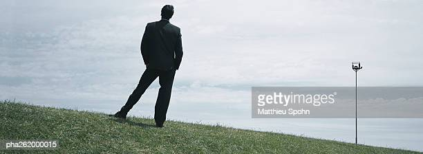 Man in suit standing on grass, full length rear view