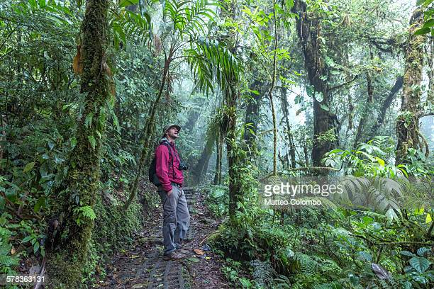 Man in the Monteverde cloud forest, Costa Rica