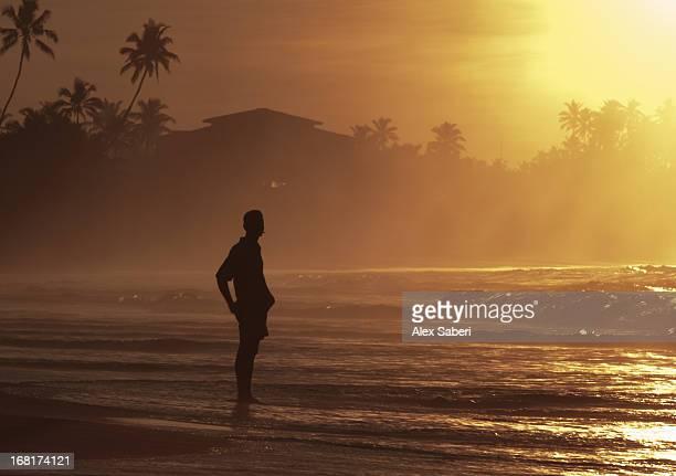 a man in the morning sunshine on weligama beach. - alex saberi stockfoto's en -beelden
