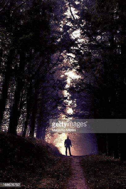 Homme dans les bois