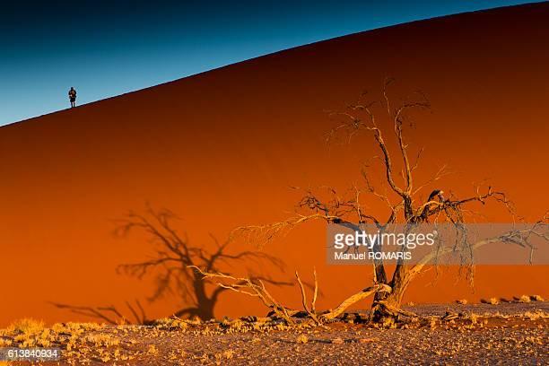 Man in top of sand dune