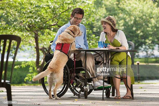 Man in wheelchair with spinal cord injury sitting at cafe with pregnant wife talking to the service dog