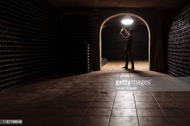 man in wine cellar checking bottle on light - ワインセラー ストックフォトと画像