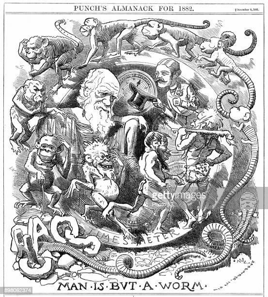 Man is but a worm Cartoon from 'Punch' London 6 December 1881 the year in which Darwin published 'The Formation of Vegetable Mould through the action...