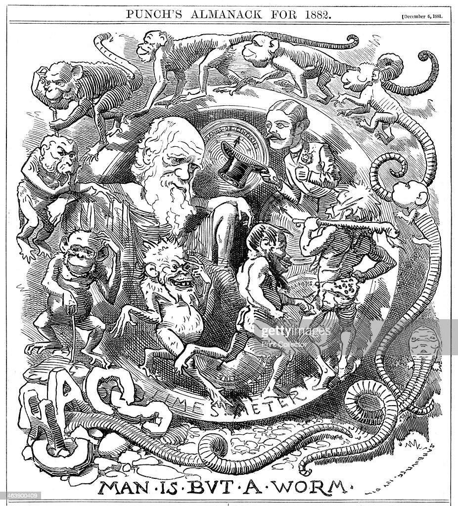 'Man is but a Worm', cartoon from Punch showing evolution from worm to man, 1881. : News Photo