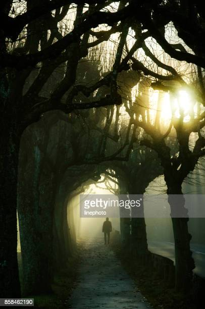 A man is going from heavy mysterious fog into the sunshine