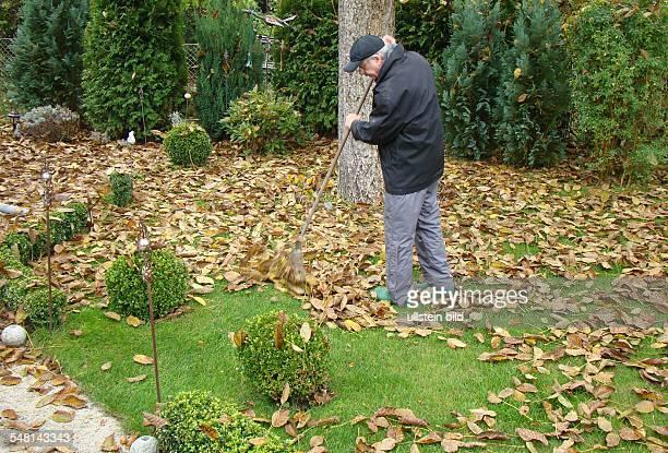 Man is raking leaves in autumn