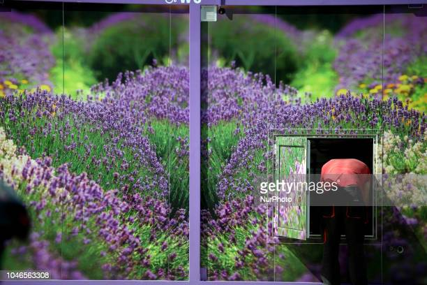 A man is seen in front of a drawing of a field of flowers during 1st March For Animal Rights in Athens Greece on October 6 2018 to spread the message...