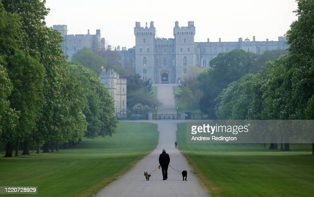 Man is seen walking two dogs on The Long Walk with Windsor Castle in the background on April 24, 2020 in Windsor, England . The British government...