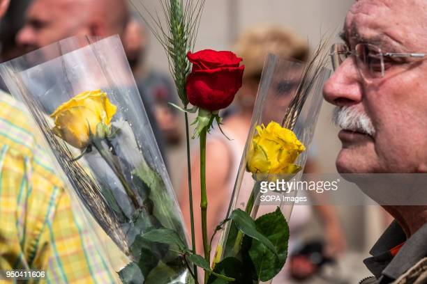 A man is seen with the traditional red rose and a yellow one the novelty of this year in vindication of the freedom of the Catalan political...