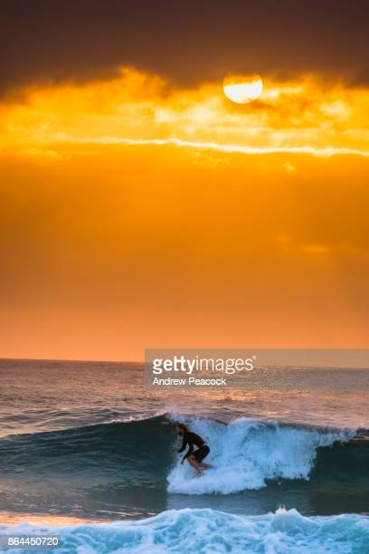 A man is surfing at dawn on the beach.