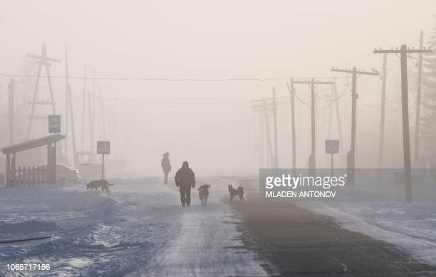 TOPSHOT A man is surrounded by dogs as he walks on the main street of the settlement of Oy some 70 km south of Yakutsk with the air temperature at...