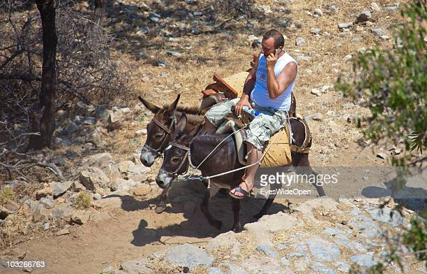 Man is talking on his mobile phone while riding donkeys up to the Acropolis of Lindos on July 04 2010 in Lindos Greece The old town of Lindos is...
