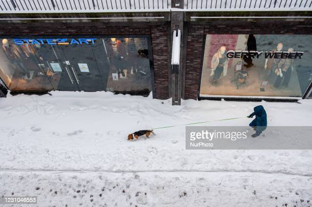 Man is walking with his dog during the snowstorm Darcy, in Nijmegen, on February 8th, 2021.