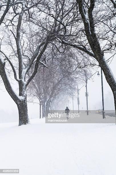 """man jogging in a snow storm, montreal - """"martine doucet"""" or martinedoucet stockfoto's en -beelden"""