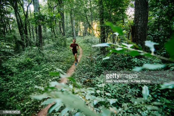 man jogging in forest along mountain to sea trail, asheville, north carolina, usa - asheville stock pictures, royalty-free photos & images