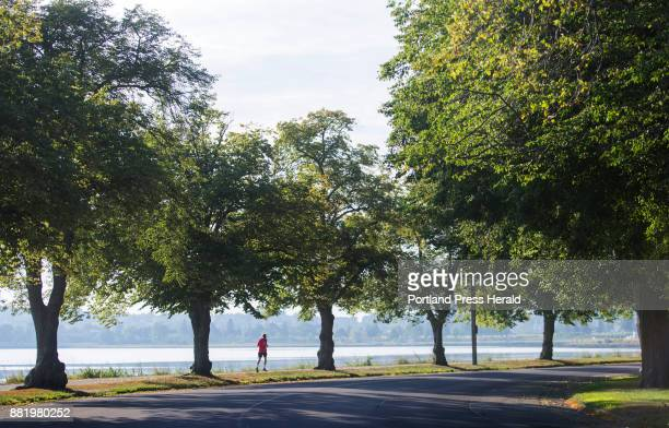 A man jogs along Back Cove Trail as morning sunlight illuminates the trees lining Baxter Boulevard on Thrusday August 3 2017