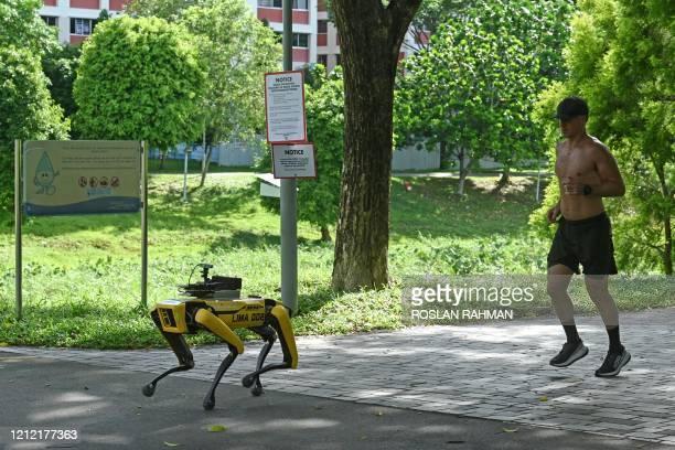 Man jogs behind a four-legged robot called Spot, which broadcasts a recorded message reminding people to observe safe distancing as a preventive...