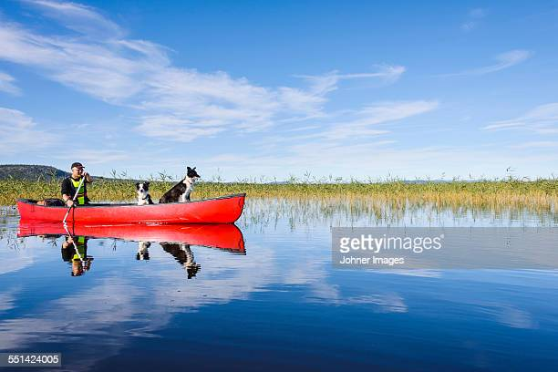 man kayaking on lake - swedish lapland stock-fotos und bilder