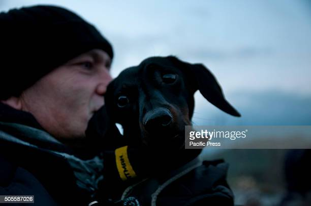 AVERNO POZZUOLI NAPOLI ITALY A man kissing his dog during the celebrations for the feast of Saint Anthony It is a centuriesold tradition that is...