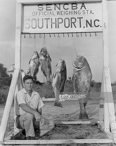 Man kneels at a SENCBA Official Weighing Station next to four black drum, the largest weighing 64 pounds and caught on 30 pound line near Southport,...